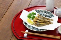 Peixes japoneses dos olhos verdes foto de stock