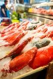 Peixes marinhos na Formosa imagens de stock royalty free