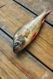 Peixes na placa de madeira Fotografia de Stock Royalty Free