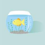 Peixes no aquário Fotografia de Stock