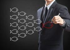 Peixes no conceito da liderança de grupo Imagens de Stock Royalty Free