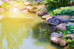 Peixes no projeto decorativo da paisagem da lagoa do jardim Imagens de Stock
