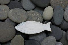 Peixes no seixo imagem de stock royalty free