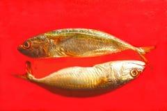 2 peixes ou PEIXES do sinal do zodíaco Imagens de Stock