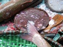 Peixes para a venda em Hong Kong Fotografia de Stock Royalty Free