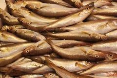 Peixes para a venda em Hong Kong Imagem de Stock