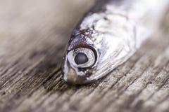 Peixes pequenos em um close up da placa de madeira Foto de Stock