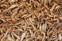 Peixes pequenos fritados Imagem de Stock