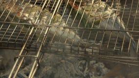 Peixes quentes em uma bandeja do churrasco vídeos de arquivo