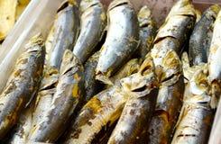 Peixes salgados Foto de Stock