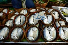 Peixes salgados de Maeklong mercado Railway Fotografia de Stock