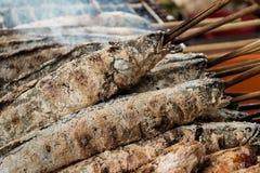 Peixes salgados frescos na grade Imagem de Stock