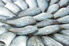 Peixes secados de sal Fotos de Stock Royalty Free