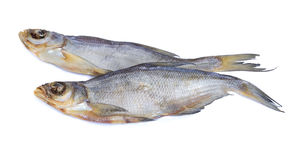 Peixes secados em um fundo branco Foto de Stock