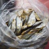 Peixes secados em um pacote pequeno Fotos de Stock Royalty Free