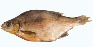 Peixes secados isolados no fundo branco Foto de Stock