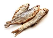 Peixes secados isolados para a cerveja Fotografia de Stock