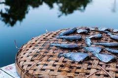 Peixes secados na cesta de bambu Imagens de Stock Royalty Free