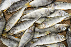 Peixes secados no fundo de madeira Imagem de Stock Royalty Free