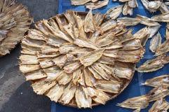 Peixes secos Foto de Stock