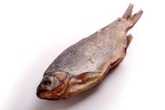 Peixes secos isolados no fundo branco foto de stock