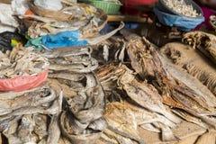 Peixes secos no mercado Fotografia de Stock