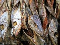 peixes secos no mercado na feira de Coxs, Bangladesh imagem de stock