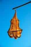 Peixes secos, porto de pesca de Madeira Imagens de Stock Royalty Free