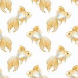 Peixes Teste padrão sem emenda Imagem de Stock