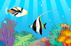Peixes tropicais do vetor Imagem de Stock Royalty Free