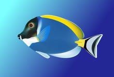 Peixes tropicais Vetor Fotos de Stock Royalty Free