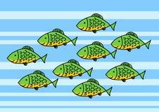 Peixes verdes Fotografia de Stock