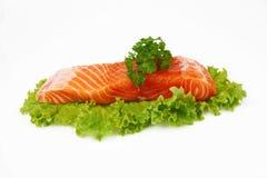 Peixes vermelhos Imagens de Stock