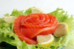 Peixes vermelhos Imagem de Stock Royalty Free