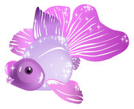 Peixes violetas Foto de Stock Royalty Free