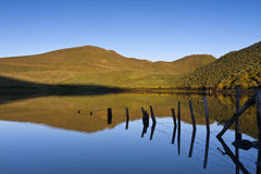 Peixinho Lake Stock Images