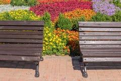 Pejzaż miejski z kolorowym kwiatu łóżkiem z ławką i Zdjęcia Stock