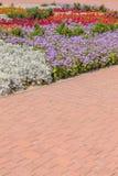 Pejzaż miejski z kolorowym kwiatu łóżkiem, chodniczkiem i Zdjęcia Royalty Free
