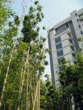 pejzażu środowiska miejskiego green Obrazy Royalty Free