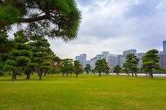 pejzaż miejski Tokyo Fotografia Royalty Free