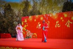 PEKÍN, CHINA - 29 DE ENERO DE 2017: Asistencia de festival de la celebración del Año Nuevo en el templo del parque de la tierra,  Imagen de archivo