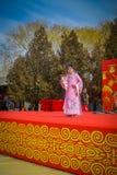 PEKÍN, CHINA - 29 DE ENERO DE 2017: Asistencia de festival de la celebración del Año Nuevo en el templo del parque de la tierra,  Fotos de archivo