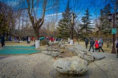 PEKÍN, CHINA - 29 DE ENERO DE 2017: Asistencia de festival de la celebración del Año Nuevo en el templo del parque de la tierra,  Foto de archivo