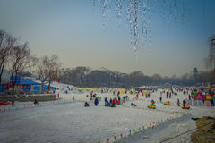 PEKÍN, CHINA - 29 DE ENERO DE 2017: La gente que asiste a los Años Nuevos justos en Longtan parquea, jugando en el canal de agua  Imagen de archivo libre de regalías
