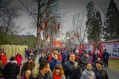 PEKÍN, CHINA - 29 DE ENERO DE 2017: La gente que asiste a los Años Nuevos justos en Longtan parquea, mercado del chino tradiciona Imágenes de archivo libres de regalías