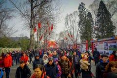 PEKÍN, CHINA - 29 DE ENERO DE 2017: La gente que asiste a los Años Nuevos justos en Longtan parquea, mercado del chino tradiciona Fotografía de archivo