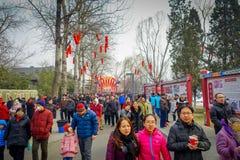 PEKÍN, CHINA - 29 DE ENERO DE 2017: La gente que asiste a los Años Nuevos justos en Longtan parquea, mercado del chino tradiciona Fotos de archivo