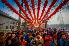 PEKÍN, CHINA - 29 DE ENERO DE 2017: Las largas colas de la gente que asiste a los Años Nuevos justos en Longtan parquean, tradici Fotografía de archivo
