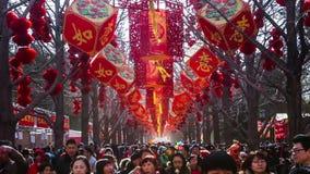 Pekín, China 2 de febrero de 2014: miles de gente se divierten en la feria del templo en el parque de Ditan durante festival de p almacen de metraje de vídeo