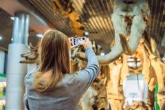 Pekín China, el 16 de octubre de 2018: teléfono móvil del uso de la mujer e imagen borrosa de la gente en la exposición del dinos foto de archivo libre de regalías